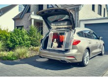 2019_FORD_FOCUS_DOGBOX_3 (1)
