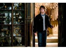 Harry Potter och Den Flammande Bägaren - in concert