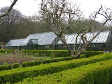 Nytt växthus i en gammel hage