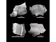 Kvartskristaller från Toba