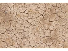 El Niño - tørke i det sydlige og østlige Afrika