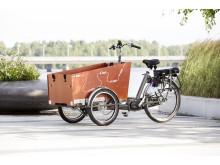 U-bike trehjuling