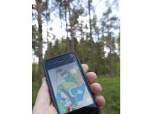 Skogskarta i mobilen