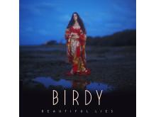 Birdy - albumomslag