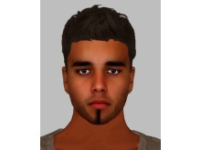 Efit of man sought re swimming pool sexual assault