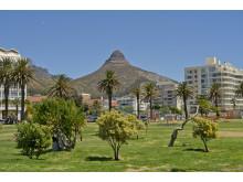 Lion's Head i Kapstaden