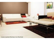 Luxurious Laminate Flooring @ HDB Flat