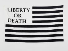 Gardar Eide Einarsson, Liberty or Death, 2006
