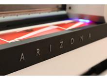 Arizona 1300