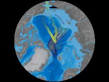 Expeditionsrutt och vattenströmmar i Arktiska havet.