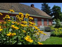 Færgegården - sommer