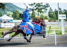 Islandshästar intar Jönköping