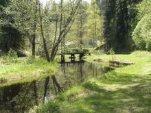Vy mot Fäboden i Säterdalen