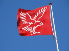 Falck - flag