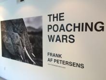 The Poaching Wars i Santa Monica