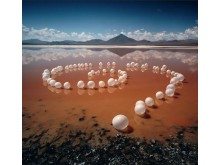 Scarlett Hooft Graafland, Vanishing Traces 2006