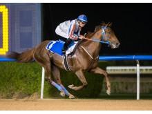 I Kirk vinner på Meydan i Dubai, UAE