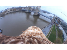 Eagle Eye View of London