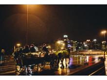 J-dagen häst och vagn
