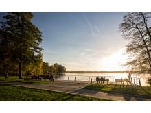 Uferweg am Scharmuetzelsee Bad Saarow _c_TMB-Fotoarchiv_Yorck Maecke