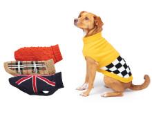 Hundtröjor höstnyheter