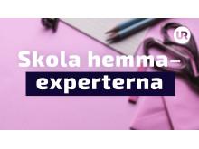 Skola hemma - experterna