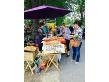 Växtmarknad i Türi, Estland