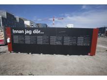 Malmös alldeles egna drömplank. Foto: Joachim Wall.