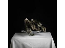 """Annika Björndotter: """"Animal08"""", 2017.  90 x  90 cm. Vurdering: 5000 kr."""