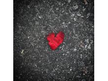 Hjärtbilder