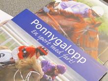Hästnäringens Ungdomssatsning planerar inför 2011