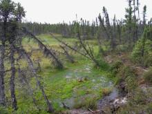 Markkollaps Misaw Lake Kanada