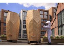 Snøhetta-designet bie-hjem på taket av Mathallen