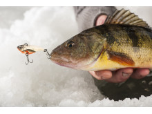 High res image - Raymarine - Ice Fishing Kit Lifestyle