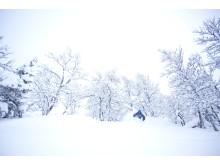 Pudder i Hemsedal 17 januar 2014