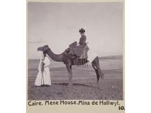 Wilhelmina rider på en kamel.
