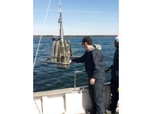 Forskare från Stockholms universitet tar sedimentprov från havsbotten utanför Askö.