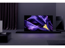 Sony_BRAVIA MASTER Series_KD-65AF9_Lifestyle_01