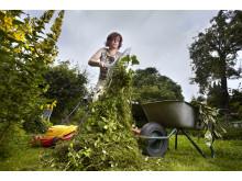 Gartenarbeit 4