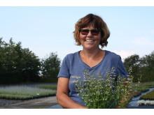 En av Lenas favoritväxter är stenkyndel.