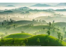 Nguyen Phuc Thanh_Vietnam_Open_Landscape_2019