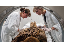 Moesgaards konservatorer Anna Tjelldén og Mari Gravgaard gør mumien fra Mongoliet klar til scanning.