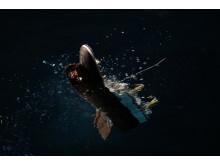 James Camerons Titanic - 20 år efter