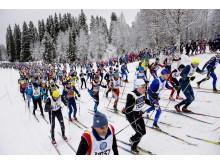 Stockholm har flest deltagare anmälda till Vasaloppets vintervecka 2015