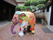 The Elephant Parade national tour: Venues and dates announced