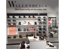 Ärorika Wallenbergs Skor