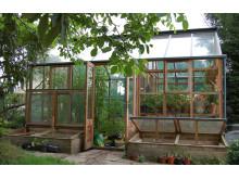 Planthouse i lummig trädgård