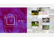 Sony_Animal_Eye_AF_11