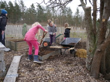 Odla unga odlare - gräva