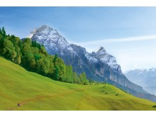 Castello Alps Selection - landscape